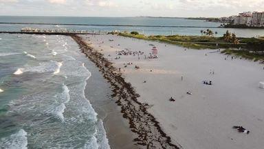 マイアミのビーチ