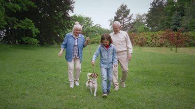 犬の散歩をする女の子と祖父母